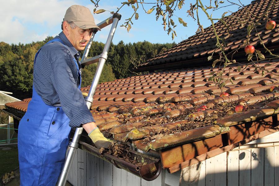 Man Cleaning A Rain Gutter On A Ladder